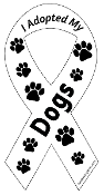 I Adopted My Dogs Ribbon Magnet