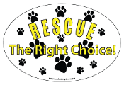 Rescue The Right Choice Oval Magnet