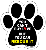 You Can't Buy Love But You Can Rescue It *bargain bin*