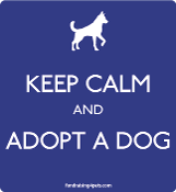 Keep Calm and Adopt a Dog magnet - blue * NEW!
