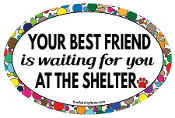 Your Best Friend Is Waiting For You oval magnet (straight) NEW!!