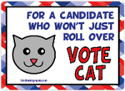 For a Candidate Who Won't Just Roll Over, Vote Cat - NEW!