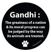 Gandhi Circle Magnet - Black