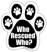 Who Rescued Who Paw Print Magnet - Black/White w/accent paws