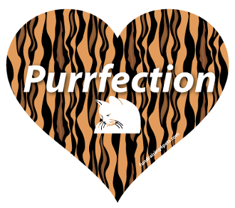 Purrfection Heart Magnet