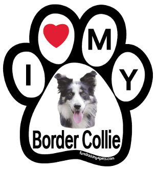 I Love My Border Collie Paw Print Magnet - NEW!