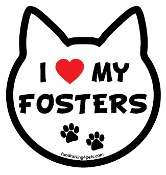 I Love My Fosters cat head magnet - NEW!