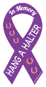 Hang A Halter In Memory ribbon magnet - violet/orange/white *NEW