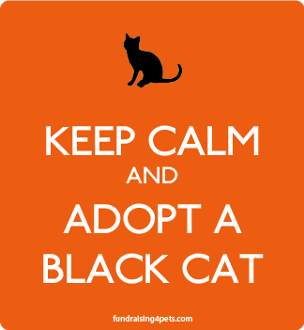 Keep Calm and Adopt a Black Cat magnet - persimmon * NEW!