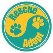 Yin Yang Rescue Adopt Circle Magnet - Teal/Gold