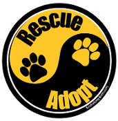 Yin Yang Rescue Adopt Circle Magnet - Black/Gold