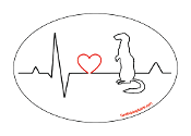 Heartbeat oval magnet - Ferret *NEW*