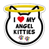 I Love My Angel Kitties cat head magnet - NEW!