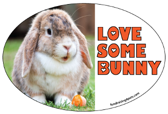 Love Some Bunny oval magnet - NEW!