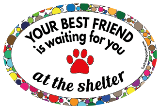 Your Best Friend Is Waiting For You oval magnet (curved) NEW!!