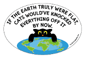 Flat Earth Cats Funny Quote oval magnet *NEW*