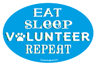 Eat Sleep Volunteer Repeat oval magnet - turquoise *NEW*