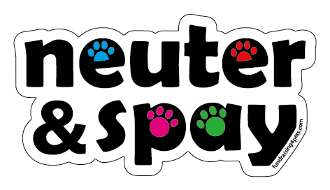 Neuter & Spay word magnet - multicolored accent paws *NEW*