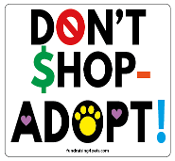 Don't Shop - Adopt square magnet *NEW*