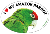 I Love My Amazon Parrot oval magnet (red accent) - NEW!