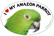 I Love My Amazon Parrot oval magnet (yellow accent) - NEW!
